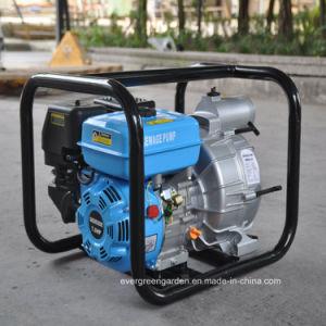 pompa ad acqua libera diplomata 2 500L/Min 4.8HP