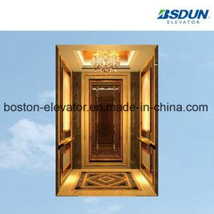 630kg 티타늄 스테인리스 주거 별장 홈 전송자 관측 엘리베이터