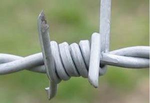Singolo filo galvanizzato tuffato caldo di torsione di /Double del nastro a fisarmonica del rasoio