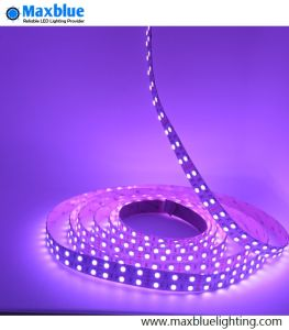 RGBW 4A1 5050 Luz de faixa de leds flexíveis
