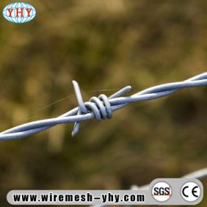 filo della protezione galvanizzato calibro dell'azienda agricola 12X14 con la lunghezza di 500m