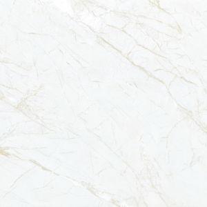 De ceramische Tegel van de Vloer en de Tegel van de Muur voor Badkamers en Keuken (P68020A)