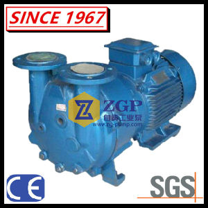 En fonte à anneau liquide horizontale d'EC de la pompe à vide