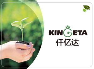 Kingeta Landwirtschafts-Pflanzenwasserlösliches Düngemittel NPK 19-19-19