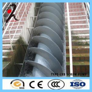 물 여과 중국에서 최신 판매 유형 Lxb 나선식 펌프