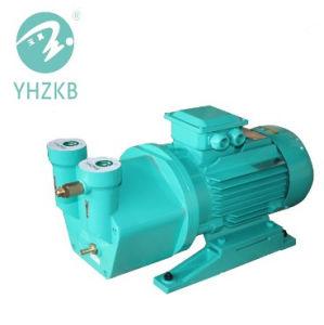Sk-0.2 líquida/bomba de vacío de anillo de agua