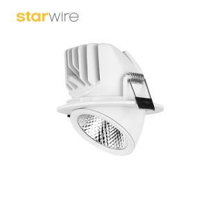 20W 25W 30W Downlight LED Tronco Elefante COB