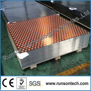 Lamiere di acciaio senza stagno stampate/strati stampati di TFS