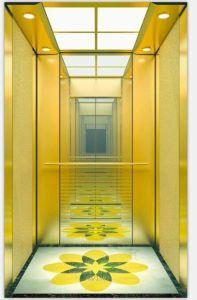 Lift van het Huis van de Villa van de Observatie van het Huis van de passagier de Panoramische met Goede Prijs