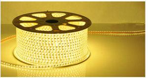 CE contabilità elettromagnetica LVD RoHS due anni di garanzia, indicatore luminoso bianco caldo della corda dell'indicatore luminoso LED 3014 SMD della decorazione