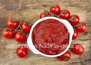 Uitstekende kwaliteit Ingeblikte Tomatenpuree