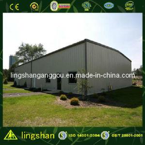 Edificio prefabricado del garage del coche de la estructura de acero (LS-SS008)