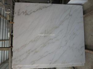 Bianco Carrara White Marble Tile per Floor e Wall