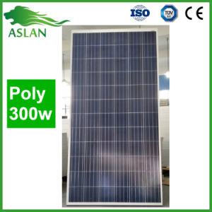 De hete ZonneModule van de Verkoop Poly300W