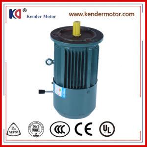 Yej-80m1-2 trois phase Induction de frein Moteurs à courant alternatif