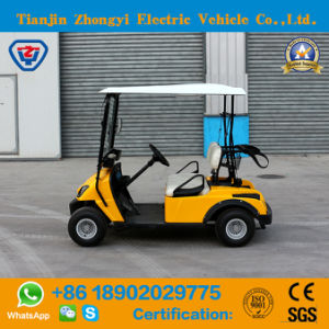 Zhongyi operado a bateria 2 Lugares carros de golfe eléctrico com alta qualidade