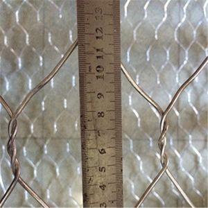 8G/M2 a 300G/M2 galvanizado o acoplamiento hexagonal del PVC y de pollo de alambre revestido