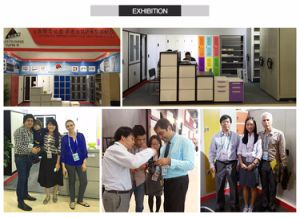 De Kast van de Deur van de Kast van het Staal van de Norm van de Kleur van de douane met Deur 15