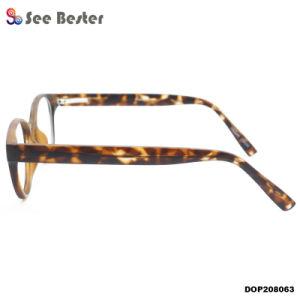 De matte Optische Frames van de Glazen van de Injectie van Demi Retro Ronde Unisex- Hete Cp van de Kleur Zwarte Bruine Optische