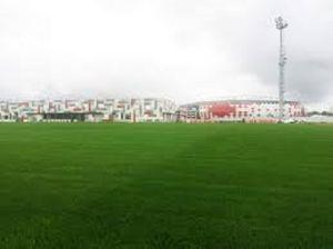 Het langdurige en Duurzame Kunstmatige Voetbal van het Gras
