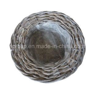 Настраиваемые экологически безвредные Flowerpot Plastic-Lined для использования вне помещений с естественной цветопередачей