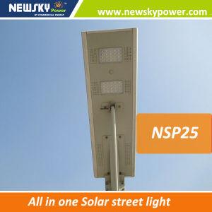 1つの太陽LEDの街灯の25W統合された太陽LEDのライトすべて