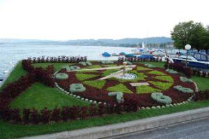 Reloj de Flores de reloj/Jardín