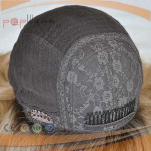 Sheitelの標準的なユダヤ人のユダヤの絹の上のかつら(PPG-l-0242)