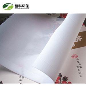 Tissu de polyester Hengke de tissu filtrant
