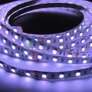 Luz de tira flexible de SMD5050 RGB 300LEDs los 5m LED