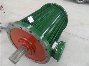 50W-5MW de puissance de l'eau Magnent Permanent générateur avec un régime faible
