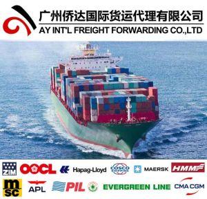 L'expédition de la Chine à l'Oman par mer
