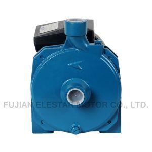 elektrische zentrifugale saubere Pumpe 0.75HP für Auto-Wäsche