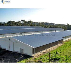 Горячая продажа оцинкованных сборных H-стальные конструкции для домашней птицы куриные пролить с гофрированной стальной лист
