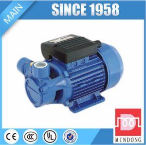 Pompe à eau électrique de pompe périphérique de fer de moulage de série de Lq