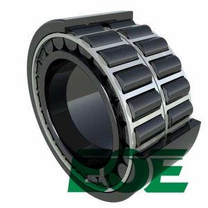 Rolamento de roletes cilíndricos completa SL SL04 5007 PP dupla carreira cheia de dupla estanqueidade do rolamento de roletes cilíndricos