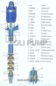 Pompa verticale della turbina di JC