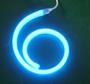Luci della corda del LED