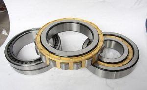 Usine de roulement à rouleaux cylindriques de vente chaude Nu204