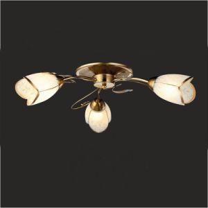 Потолочные светильники люстра потолочный светильник (GX-6083-3)