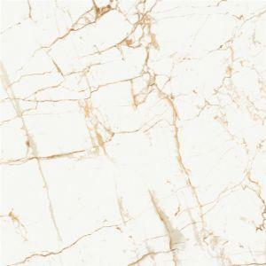 Tuiles Polished complètement glacées de porcelaine (YD6B101)
