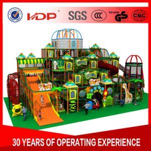Fábrica de alta qualidade do parque de diversões de alimentação de equipamentos de playground coberto