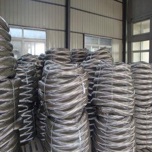 Het Roestvrij staal van uitstekende kwaliteit 304/316/321 Flexibele Gevlechte Slang