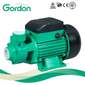 Automatic QB60 eléctrica de cebado de bomba de agua doméstico con rodete de latón