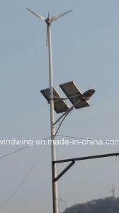 400W het Hybride Systeem van de Turbine van de Macht van de wind & PV van het Comité (100W-20kw)