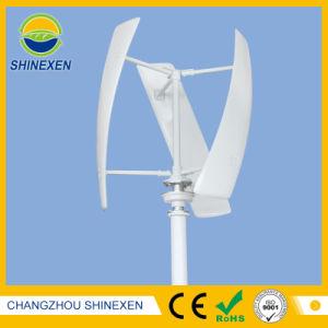 10kw 360Vの大きい縦の風力か風発電機