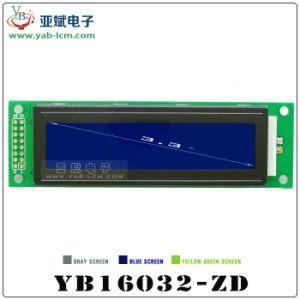 Affissione a cristalli liquidi con LH-Zd Lattice Screen 160 * 32 Monochrome Bitmap Screen dell'affissione a cristalli liquidi 16032 del Puntino-Matrix di Character