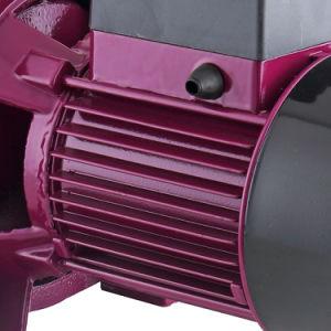 De beste Pomp van Water 100 van de Zuiging van de Machine van het Water van de Elektrische Motor van Italië van de Prijs Pompende Zelf Straal100L