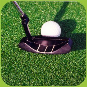Golf-setzendes Grün-künstliches Gras-setzendes Grün