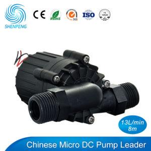 Pompa stridente del mini 12V 24V Pressione-Cuscinetto di BLDC con la testa 8m
